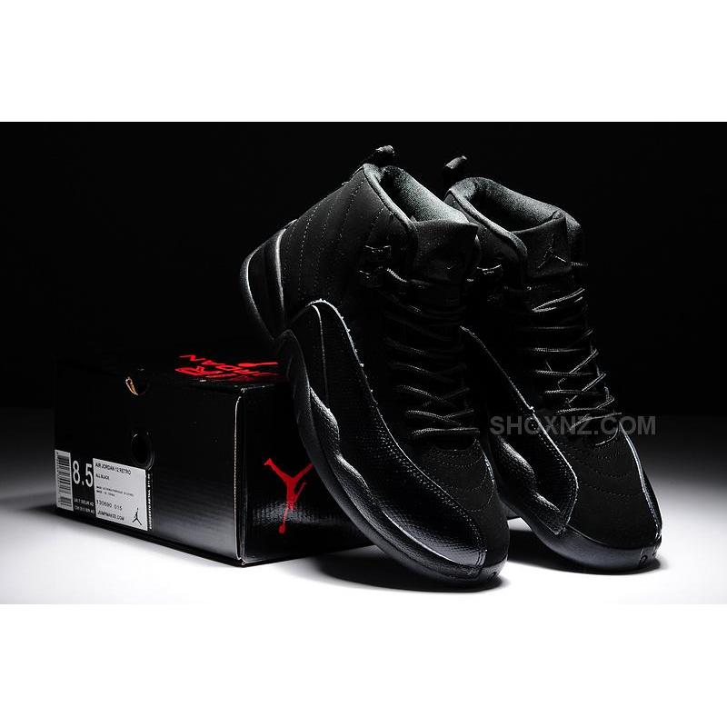 mens jordan 12 retro shoes nz